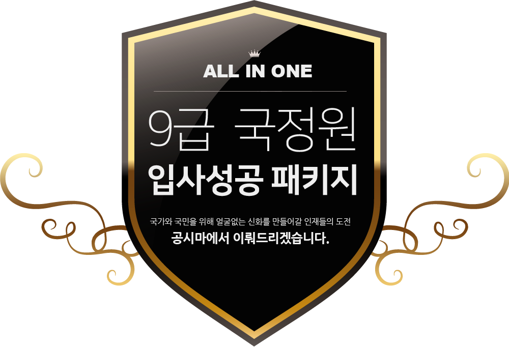 ALL IN ONE 9급 국정원 입사성공 패키지